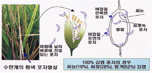 [부음] 본사 허덕용 대표 장모상